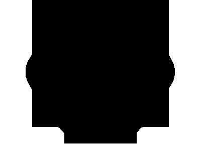 tavuk